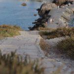 alley-beach-byway-1035739